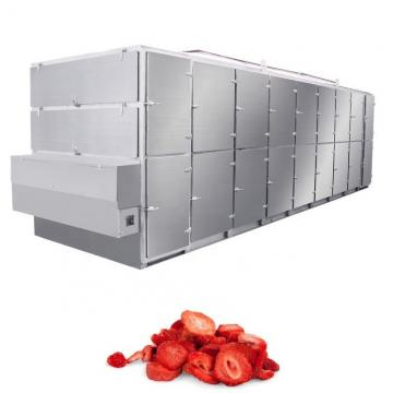Electric Heating 240kg Fruit Drying Machine