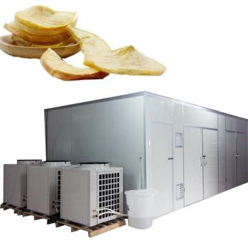 Mushroom Fruit Vegetable Drying Machine Food Processing Dehydrator