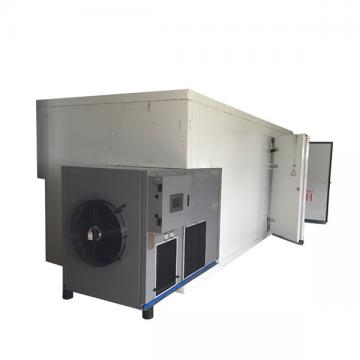 Drying Machine for Fruits with Low Price